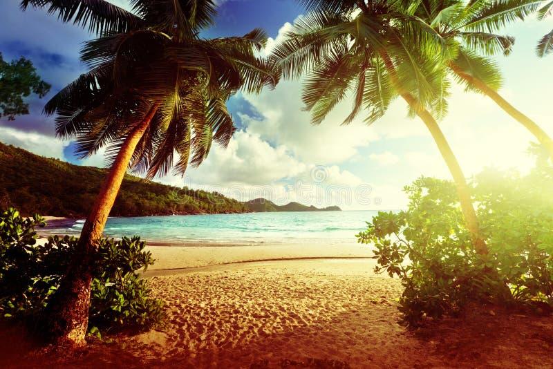 在海滩, Mahe海岛,塞舌尔群岛的日落 库存照片