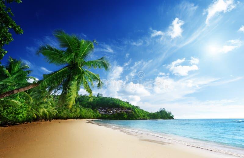在海滩Anse Mahe海岛,塞舌尔群岛Takamaka的日落  库存图片
