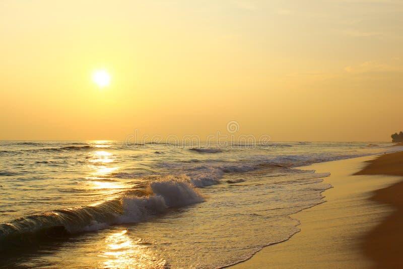 在海滩Koggala,斯里兰卡的美好的日落 免版税图库摄影