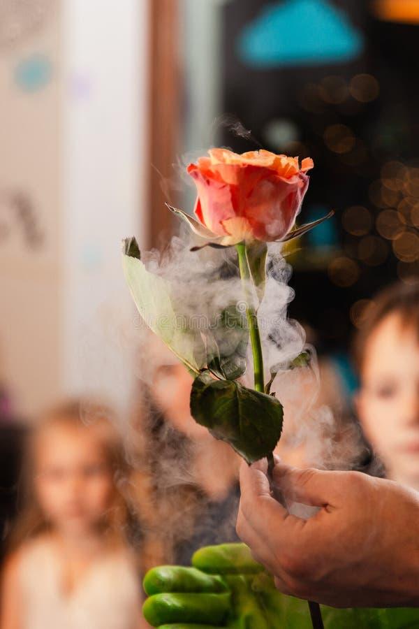 在液氮-儿童生日孩子的装饰党的冻玫瑰 免版税库存图片
