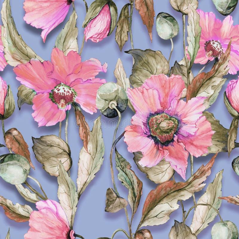 在淡紫色背景的美丽的桃红色鸦片花 柔和的淡色彩色的无缝的花卉样式 多孔黏土更正高绘画photoshop非常质量扫描水彩 向量例证