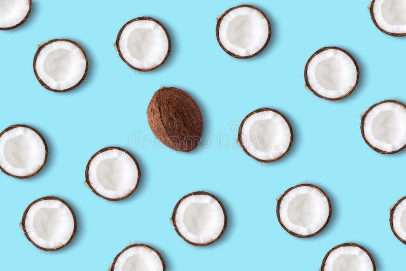 在淡色蓝色背景的椰子果子 最小的夏天conce 免版税库存图片
