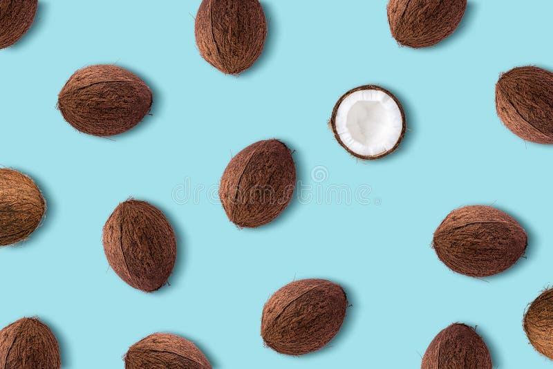在淡色蓝色背景的椰子果子 最小的夏天conce 免版税库存照片
