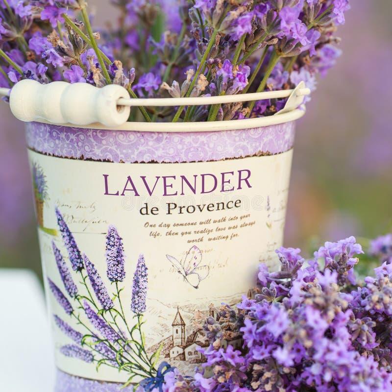 在淡紫色花的辅助部件 库存照片