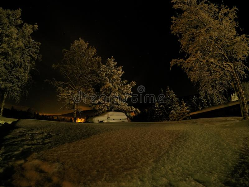 在深新的雪埋没的汽车在与高大的树木的晚上 库存图片