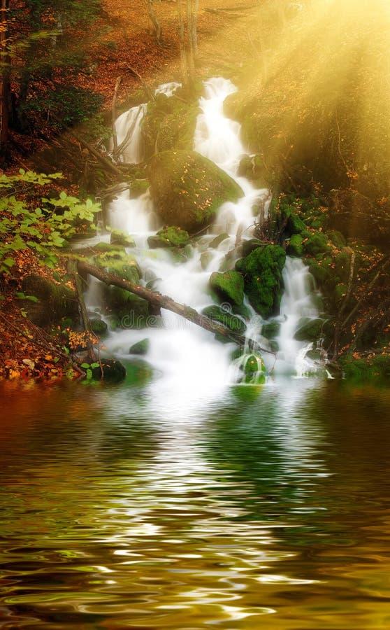 在深木头的镇静河、瀑布和太阳光芒 库存图片