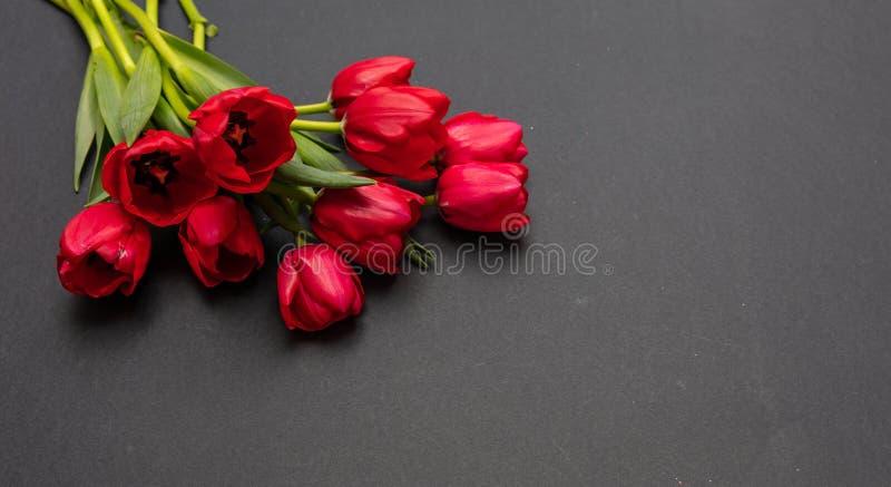 在深灰背景,拷贝空间的红色郁金香花束 免版税库存图片