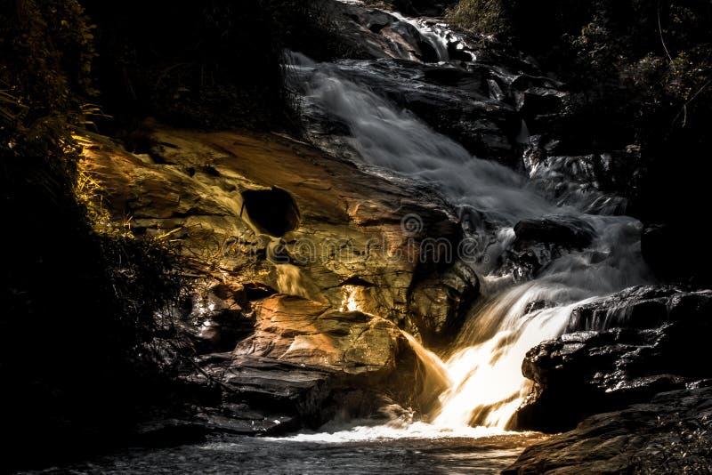 在深热带雨林的Beautyful奥秘夜黄灯有流动的小瀑布瀑布的 图库摄影