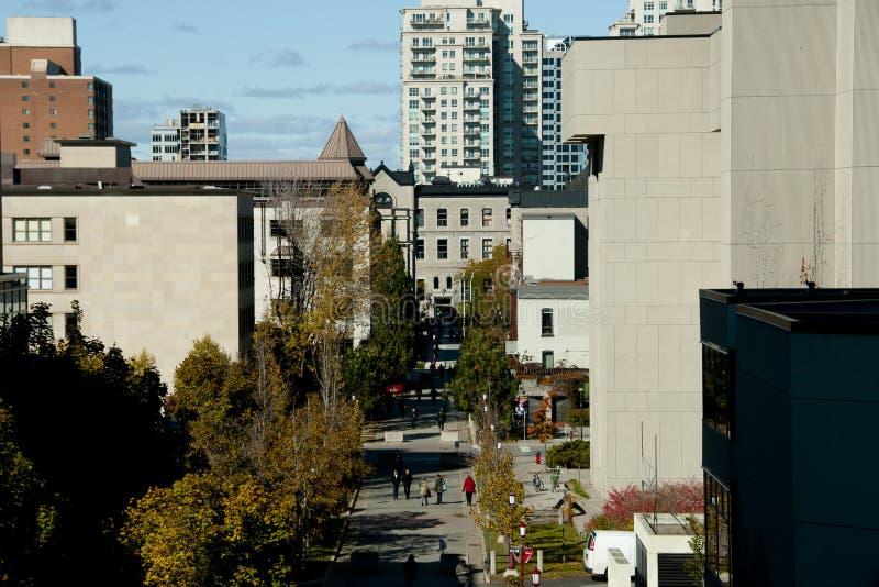 在渥太华大学-加拿大的大学私有街道 免版税库存图片