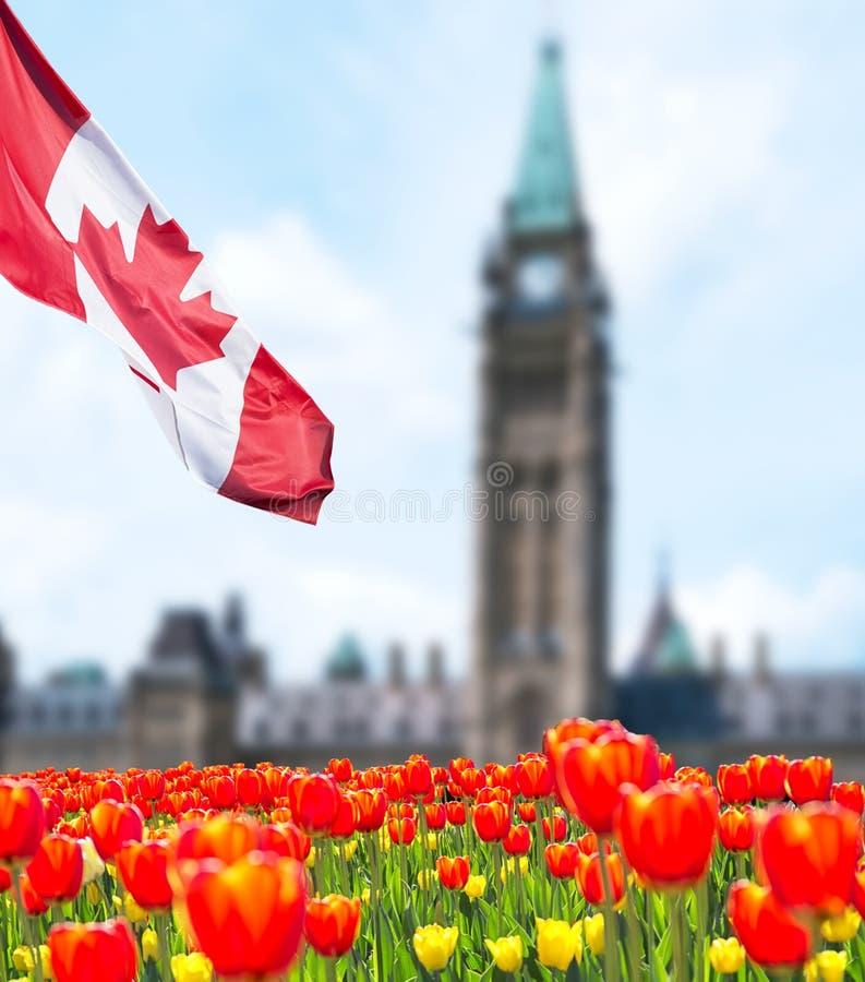 在渥太华的加拿大议会大厦 免版税库存照片