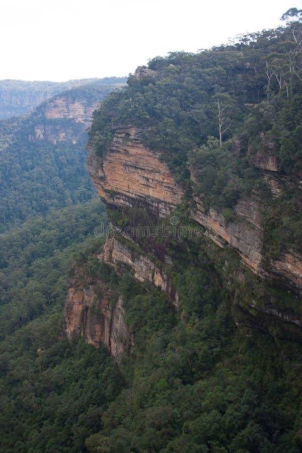 在温特沃斯瀑布附近在蓝山山脉在澳大利亚 免版税库存照片
