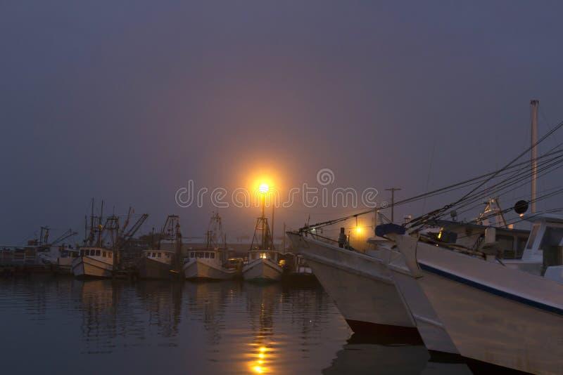 在港口的有雾的黎明 免版税图库摄影