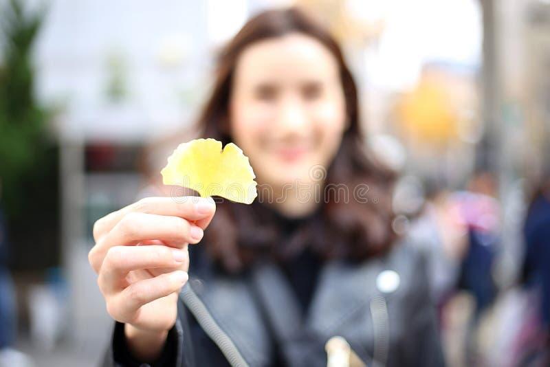 在游人的手上的银杏树叶子在韩国 亚洲旅游举行的秋天黄色银杏树叶子在手边有被弄脏的背景 免版税库存照片