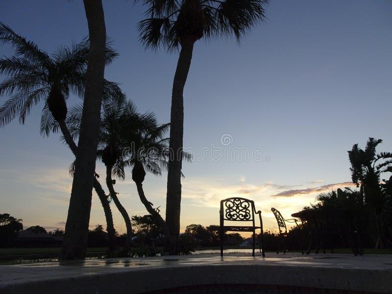 在游泳池的日落和棕榈树 库存照片