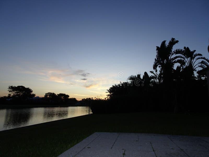 在游泳池的日落和棕榈树 库存图片