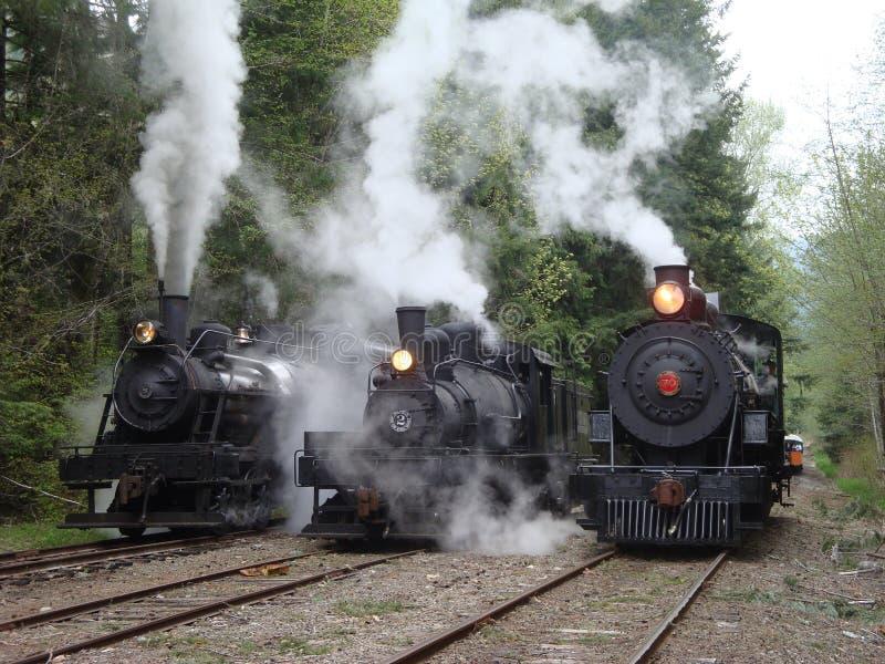 在游行的三辆采伐的蒸汽机车 免版税库存图片