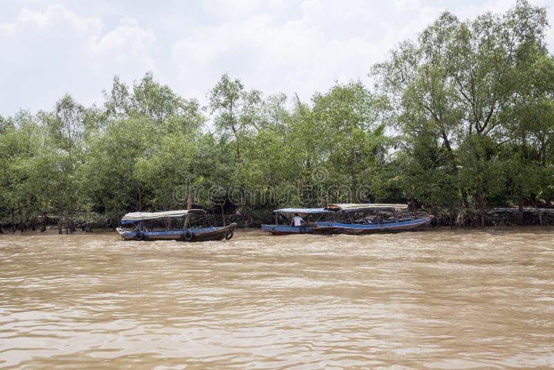 在湄公河三角洲的小船 免版税库存图片