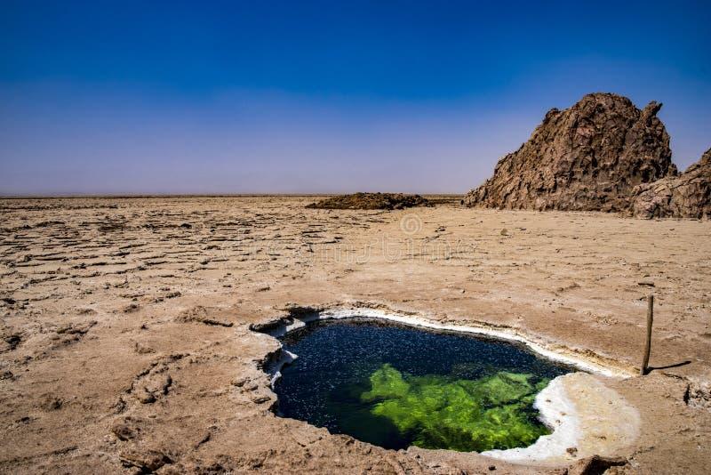 在湖下,湖Assale,埃塞俄比亚 免版税库存照片