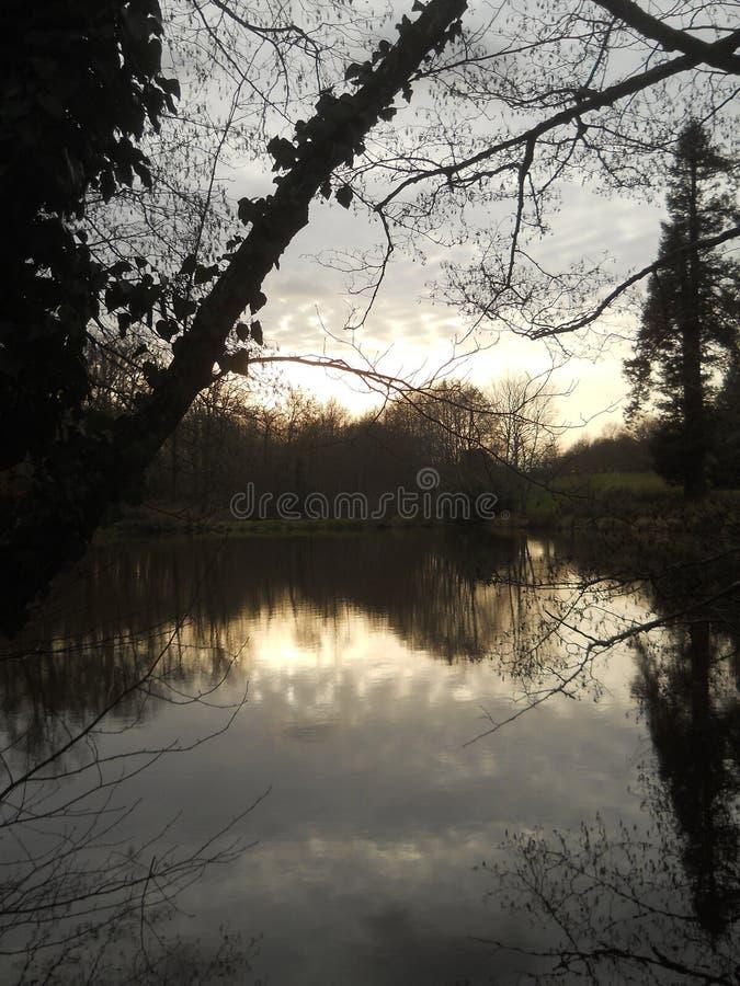 在湖反射的冬天场面 免版税库存照片