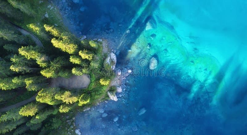 在湖和森林自然风景的鸟瞰图从寄生虫 免版税库存照片