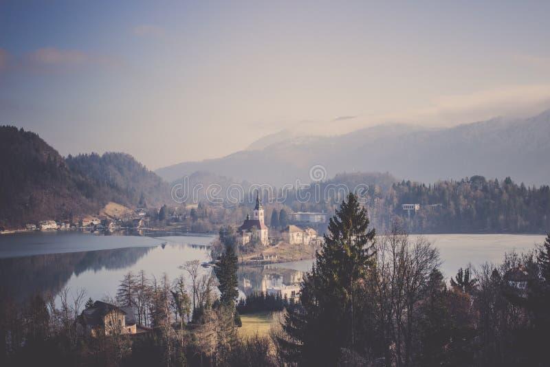 在湖小山森林包围的小海岛上的流血的城堡 库存图片