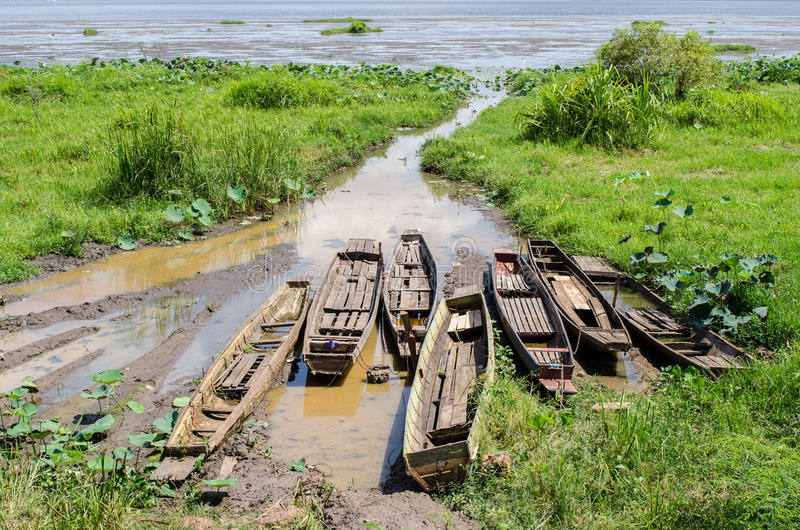 在湖岸停泊的小船 免版税库存照片