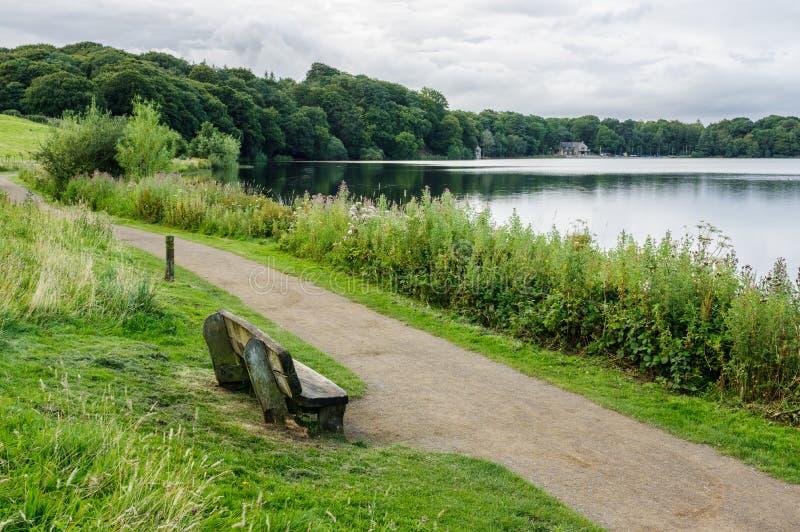 在湖旁边的长凳 免版税库存照片