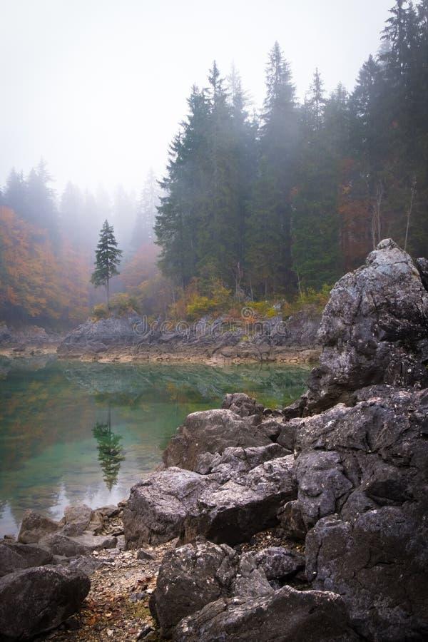 在湖有反射的拉吉富西内的树在有雾的早晨 库存照片
