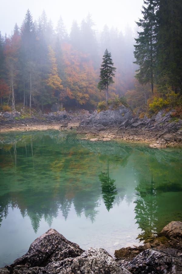 在湖有反射的拉吉富西内的树在有雾的早晨 免版税库存图片