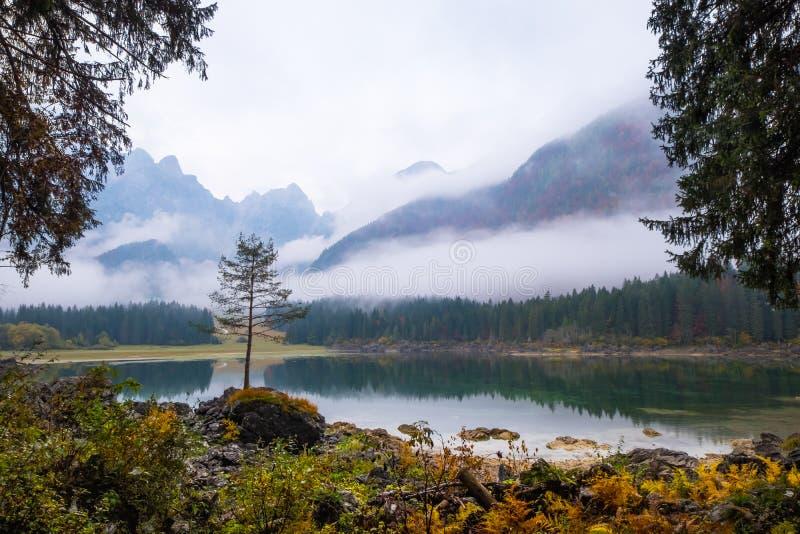 在湖有反射的拉吉富西内的树在有雾的早晨 免版税库存照片