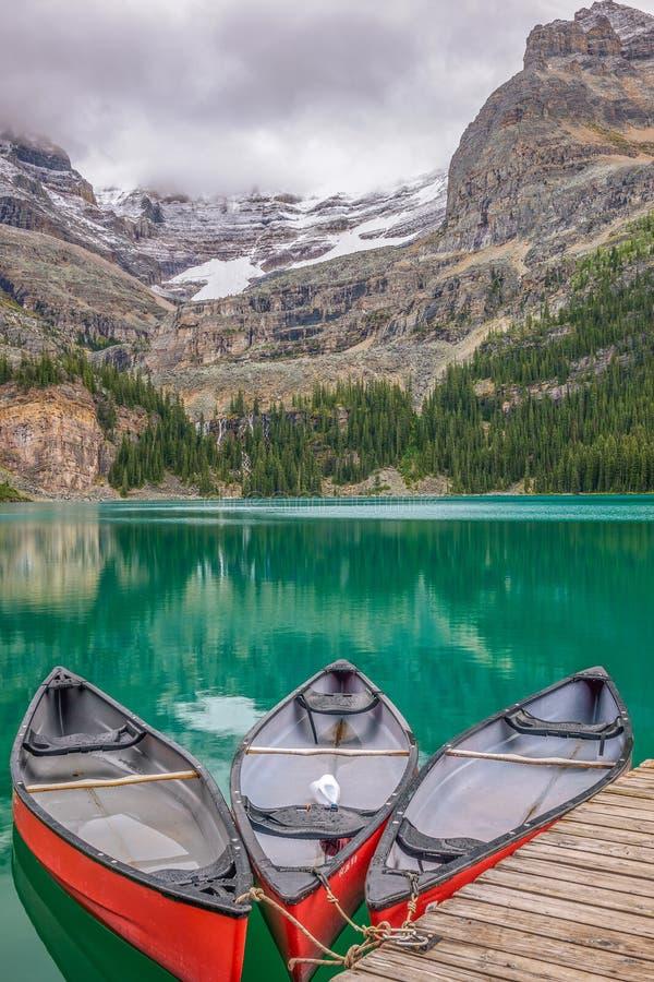 在湖欧哈拉的独木舟 Yoho国家公园 空中不列颠哥伦比亚省街市温哥华视图 加拿大 库存图片