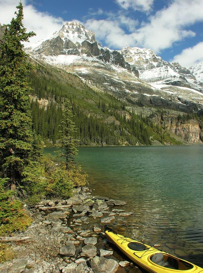 在湖欧哈拉,幽鹤国家公园,加拿大的黄色皮船 免版税库存照片