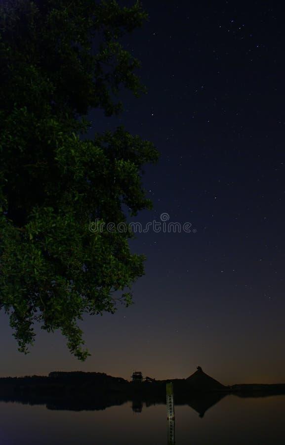 在湖的一个结构树在晚上 免版税库存图片