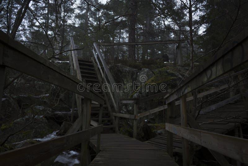 在湖的一座山的桥梁和楼梯,对森林 免版税库存照片
