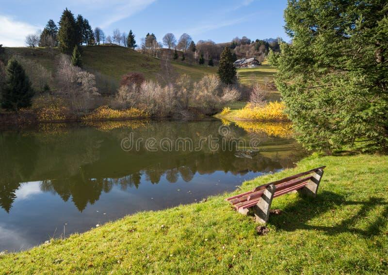 在湖的公园长椅在黑森林里 库存图片