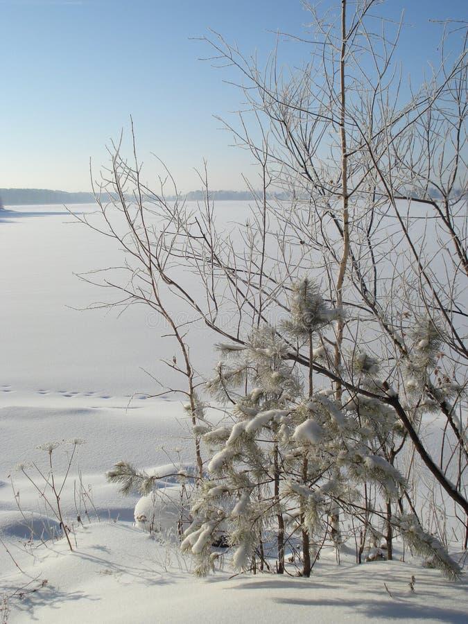 在湖的冬天 库存照片