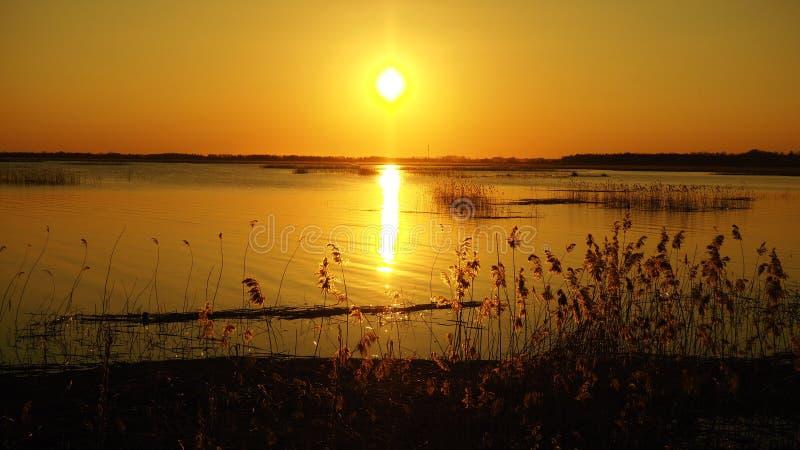 在湖的太阳和日落橙色天空 免版税库存照片