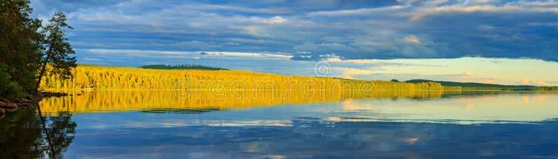 在湖的太阳照亮的狂放的森林有反射的 免版税图库摄影