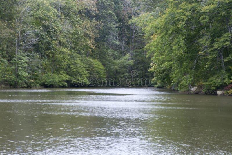 在湖的小小海湾 免版税库存图片