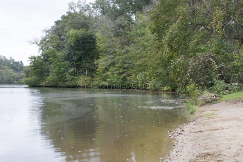 在湖的小小海湾 库存照片