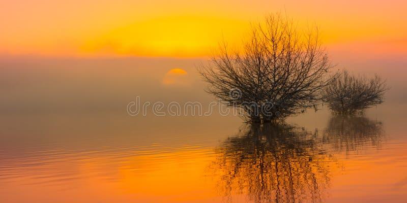 在湖的日出雾的 免版税库存照片