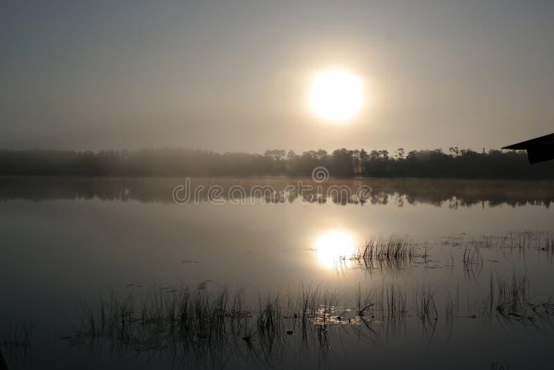 在湖的日出 库存照片