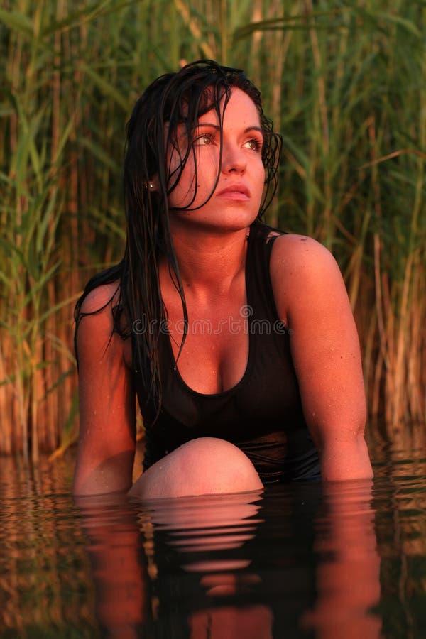 在湖的日落假日 库存图片