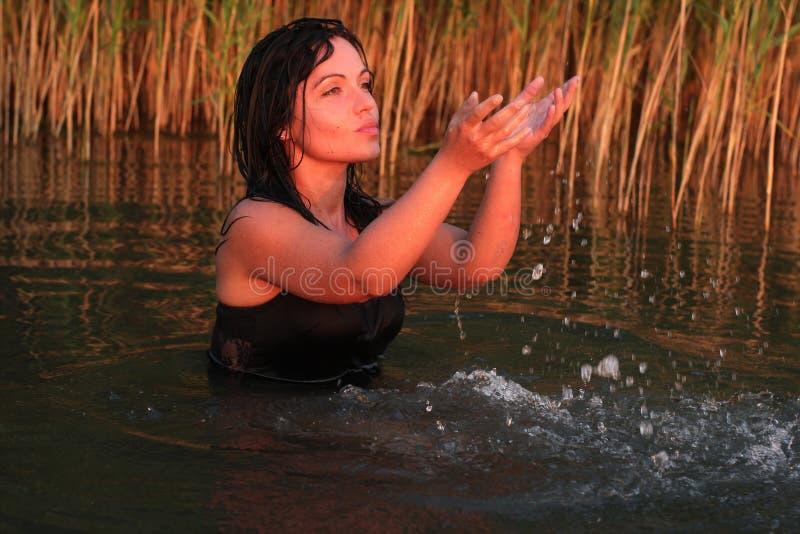 在湖的日落假日 库存照片