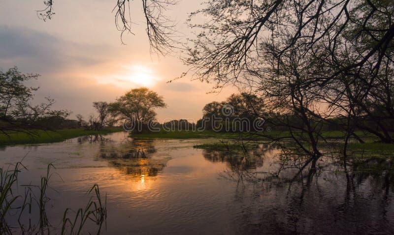 在湖的日落的印地安前面 免版税库存图片