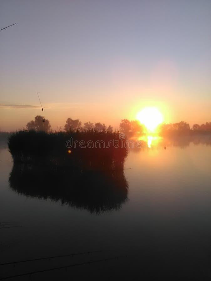在湖的早晨 库存照片