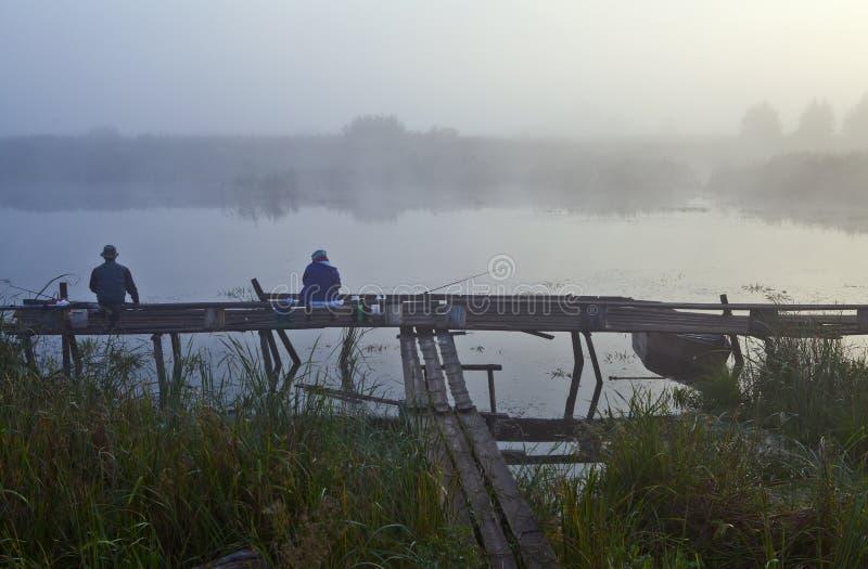 在湖的早晨 免版税库存图片