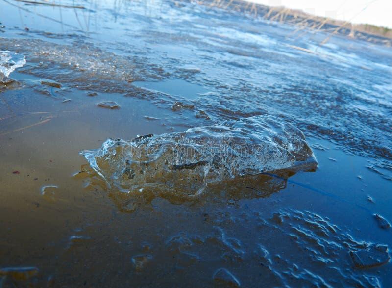 在湖的春天洪水 免版税库存图片