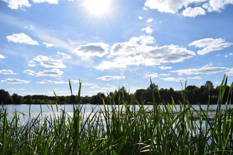 在湖的晴天 免版税库存图片