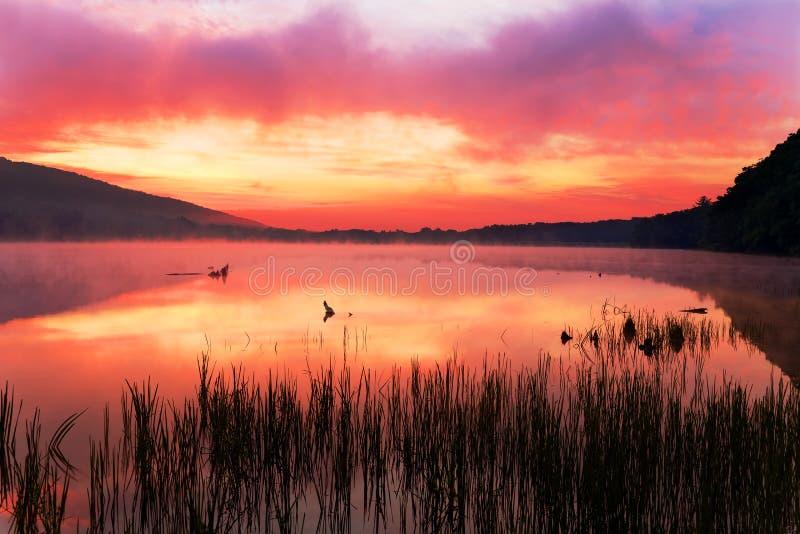 在湖的有薄雾的日出 免版税库存照片